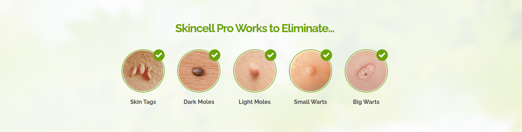 skincell pro work